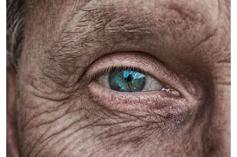 Vision loss due to AMD: discovery of a blood biomarker to assess the diet-related risk
